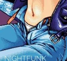 Nightfunk (past and future funk classics)
