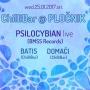 Novi Chillibar s Psilocybianom i DJ Batisom