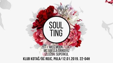 Soul Ting Vol. 4