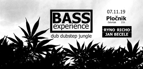 Bass experience: dub dubstep jungle sessions